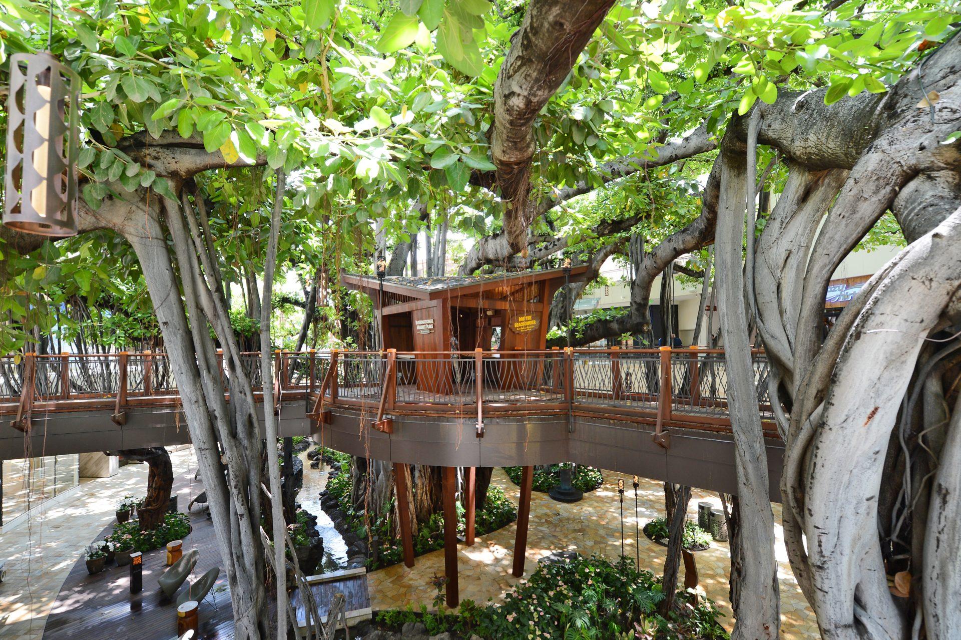 International Market Place Tree House